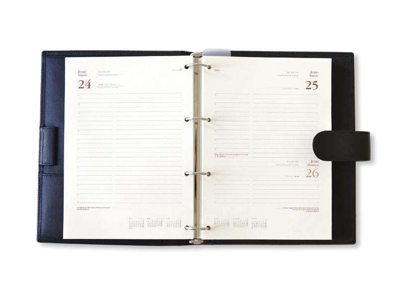 agenda-2019-personalizadas-dia-pagina-anillas